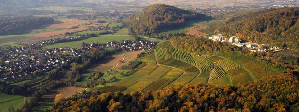 Taxiarchos228-Aerial-View-BollschweilKalkwerk2