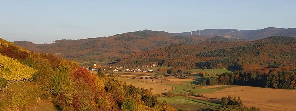 Bollschweil im Herbst