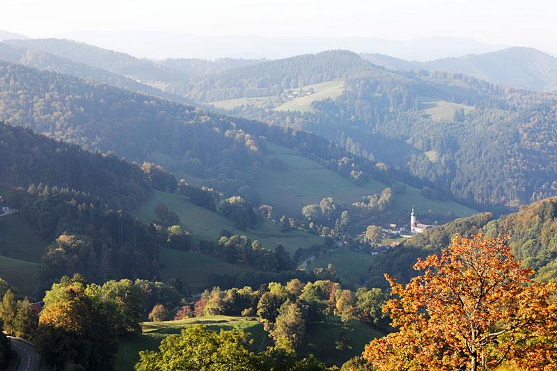 Ausblick über die Wälder der Umgebung