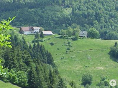 Haus Steiert
