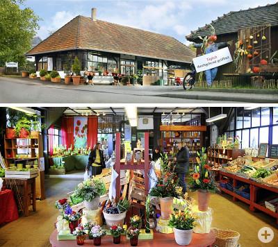 Gärtnerei Schmelzer - Alte Markthalle